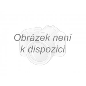 Festina - Swarovski 20496/2